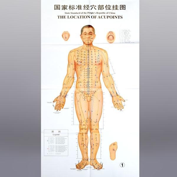 Produkty Cinske Mediciny Akupunkturni Drahy Plakaty